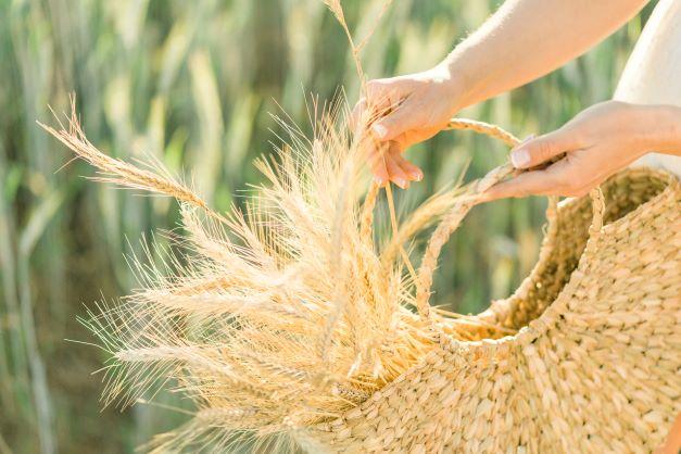 Bolsa com trigo
